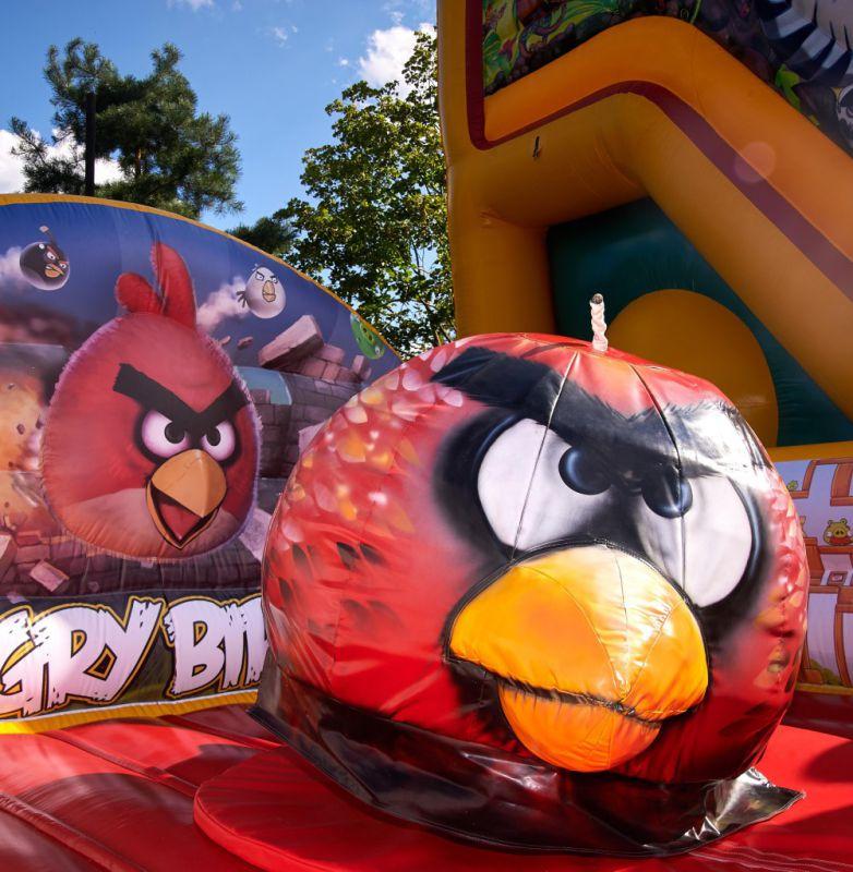 Родео Angry Birds